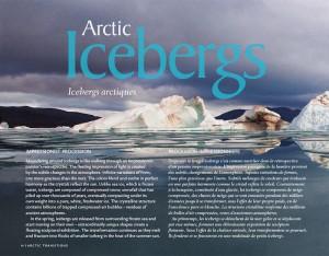 Arctic_Icebergs