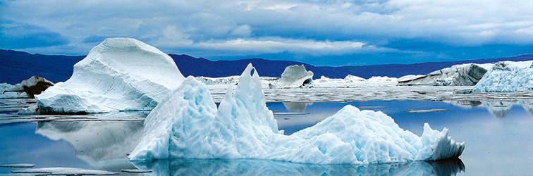 Arctic Transitions